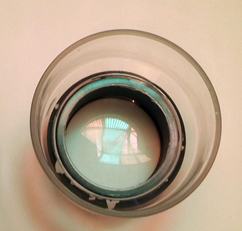 מגדלת-כוס-גדולה-4016